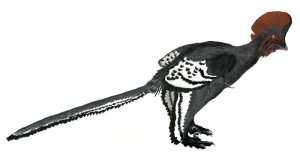 Anchiornis_martyniuk, wikimedia