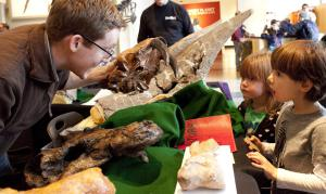 Adam Huttenlocker showing fossils to kids at the Burke Museum. Photo by Lara Shinn.