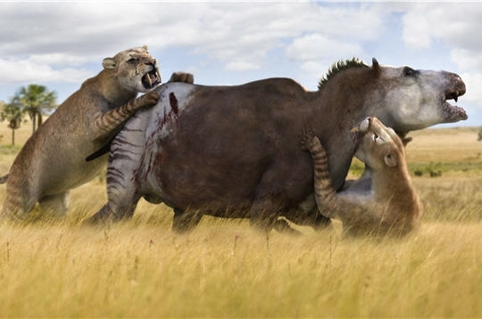 Y Were Dinosaurs So Big Smilodon fatalis &#171...