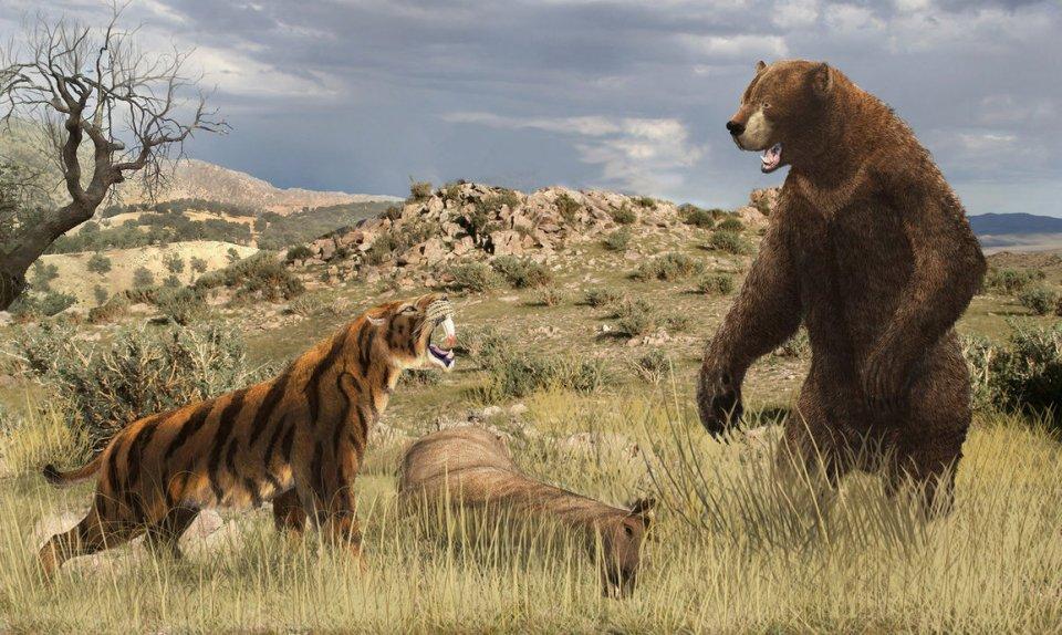 http://leogon.deviantart.com/art/Smilodon-vs-Arctodus