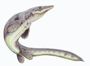 This is not the lizard you're looking for. Platecarpus. Wikimedia.