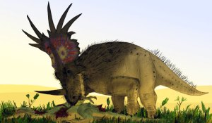 "Yep, even some of these dinosaurs had bristly ""feathers"". Mark Witton"