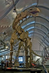 Argentinosaurus. Wikipedia