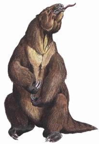 Megatherium, Wikipedia.