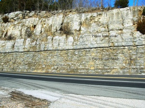 The contact (black line) between the Pitkin Limestone (above) and the Fayetteville Shale (below) along highway 65 near Marshall. Arkansas Geological Survey.
