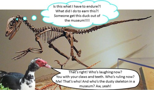 Not ALL dinosaurs died out.