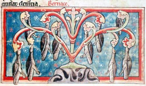 British Library, Harley MS 4751, Folio 36r as posted by The Medieval Bestiary