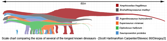 Brontosaurus size compared too many fish dating site 4