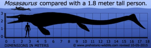 mosasaurus-size