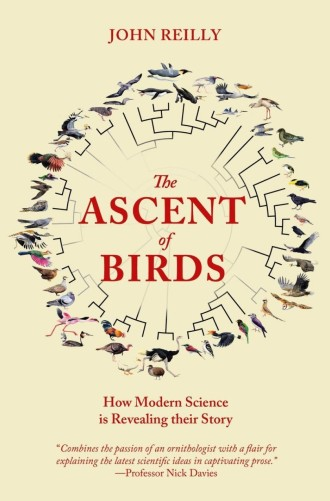 The-Ascent-of-Birds